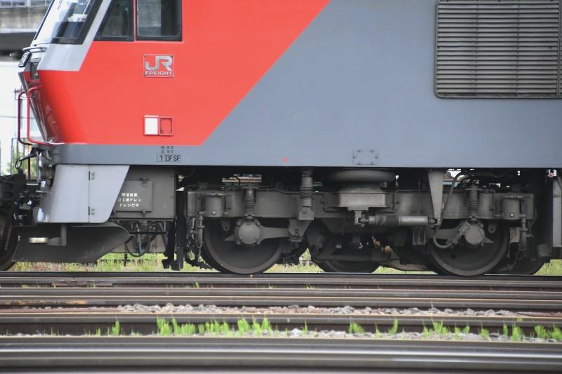 DF114DSC_9072-2.jpg