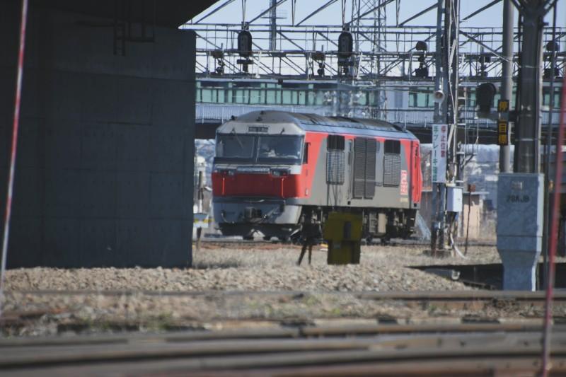 DF115DSC_8235-2.jpg