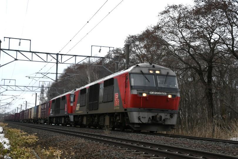 DF53DSC_7600-53.jpg