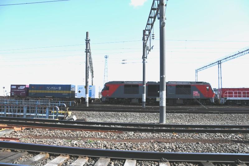 DF55DSC_8696-2.jpg