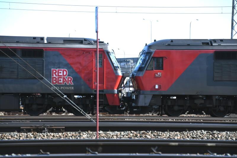 DF58DSC_8225-2.jpg
