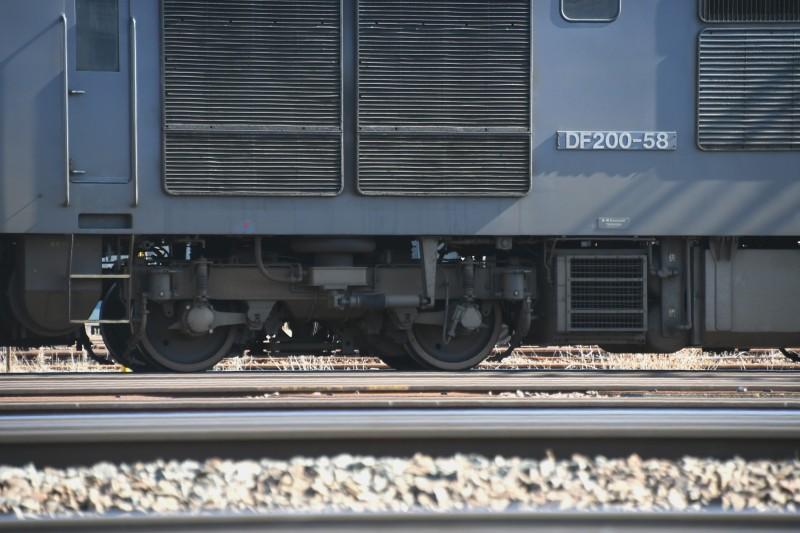 DF58DSC_8229-2.jpg