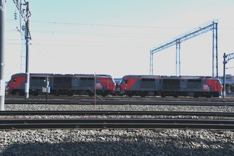 DF58DSC_8230-2.jpg