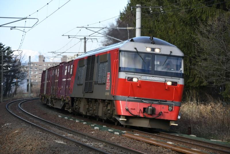 DF5DSC_8204-3.jpg