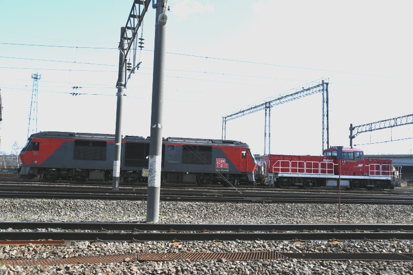 HD501DSC_8704-2.jpg