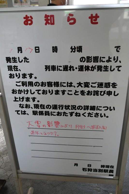 tsukigataDSC_8556-2.jpg