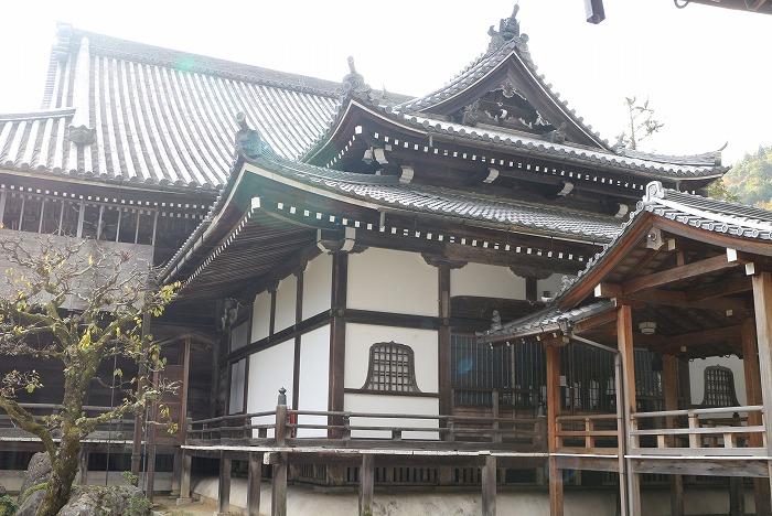 西教寺 本堂横から 1 11 19