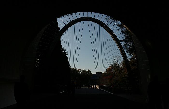 トンネルを通ってミホミュージアムへ 1 11 19