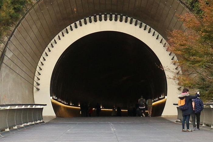 このトンネルは帰りです miho museum 1 11 19