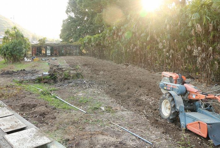 フジバカマを植える場所整備中 1 12 9