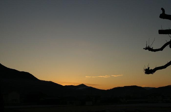 仕事始めの日 朝陽の前 2 1 6