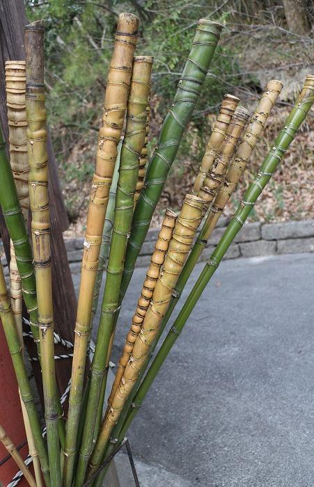 素敵な竹の杖がいっぱい 大師堂横 2 1 17