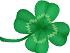 four-leaf-cloversyou (2)