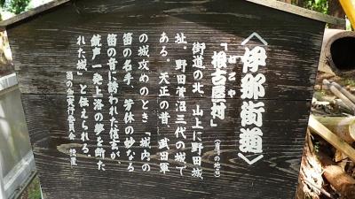 20180428豊川稲荷048