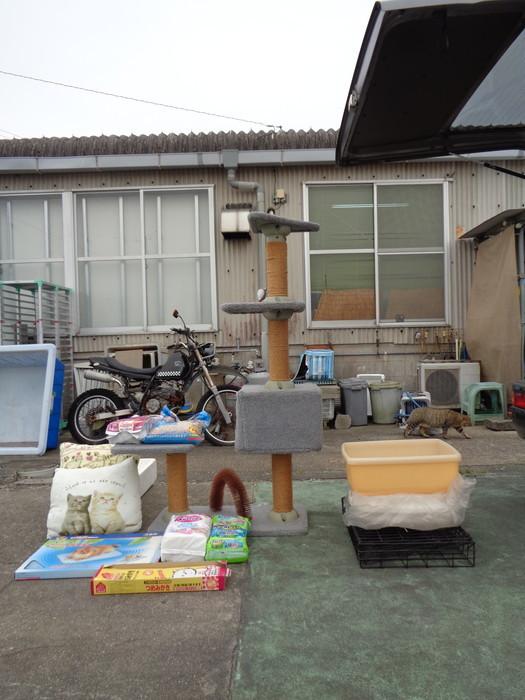 gokifu0177.jpg