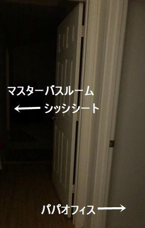 IMG_3686moji.jpg