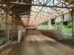 養鶏場堆肥2019.8(1)