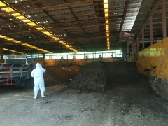 養鶏場堆肥2019.8(2)