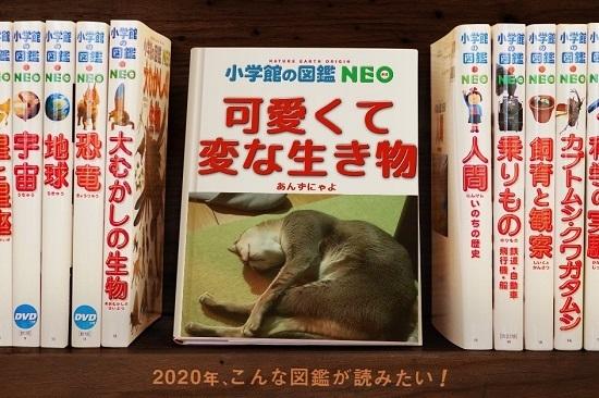 200201-04 (2)