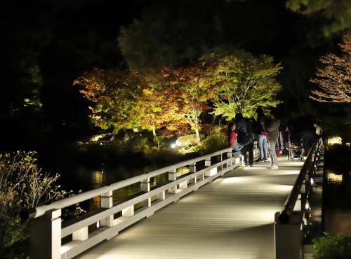 日本庭園橋