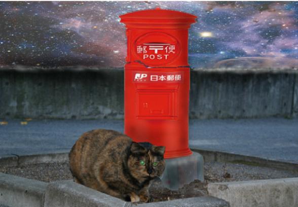 猫からの手紙