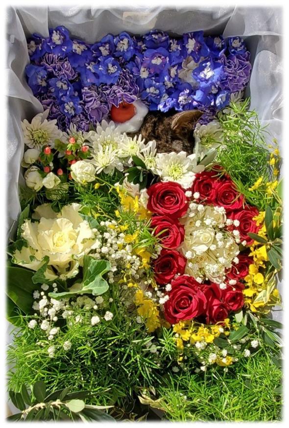 リエルくんの花の舟