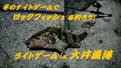 大井漁港3