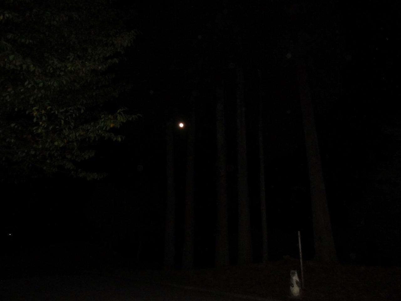 親子で温泉&キャンプツーリング 2019(石川県森林公園三国山キャンプ場)