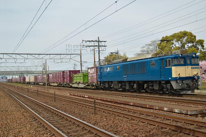 DSC_0192-2