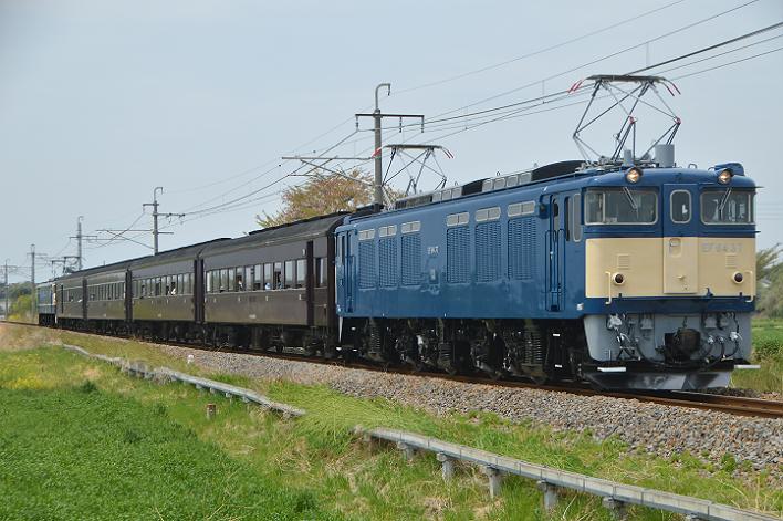DSC_4957-3-1.png