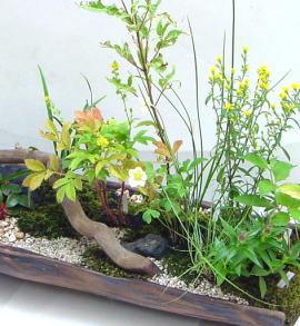 tsukasa-okurimono-yose01.jpg