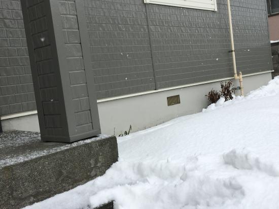 記録的な雪の少なさ2020③