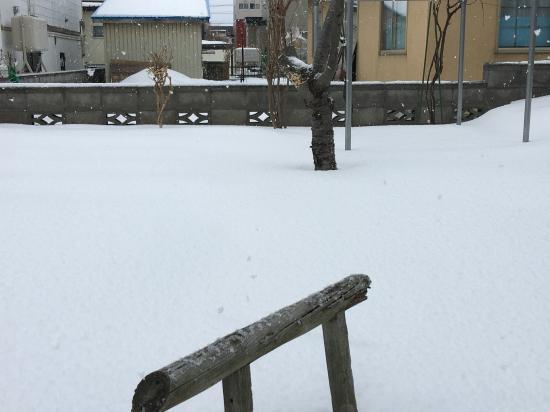 記録的な雪の少なさ2020②