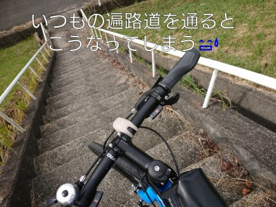 he12-12b-04.jpg