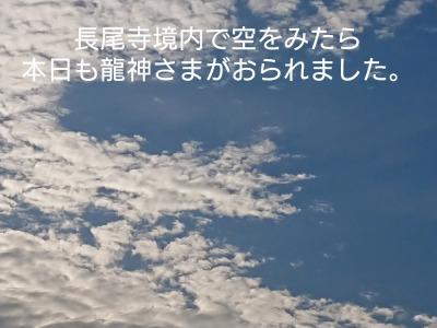 he12-14a-12.jpg