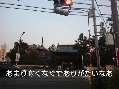 he13-1a-02.jpg