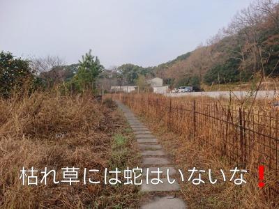 he13-1a-05.jpg