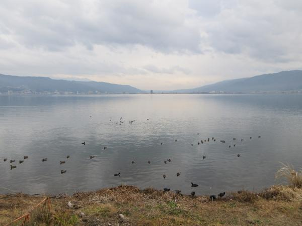 IMG_2377諏訪湖3_convert_20200123135906