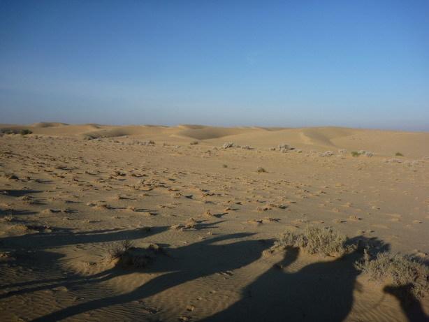砂丘を振り返る_サイズ変更