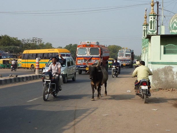 アダーラジのバス停にて パキスタン風のトラックが増える_サイズ変更