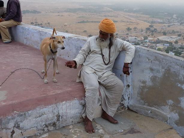 聖職者のじいちゃんと犬_サイズ変更