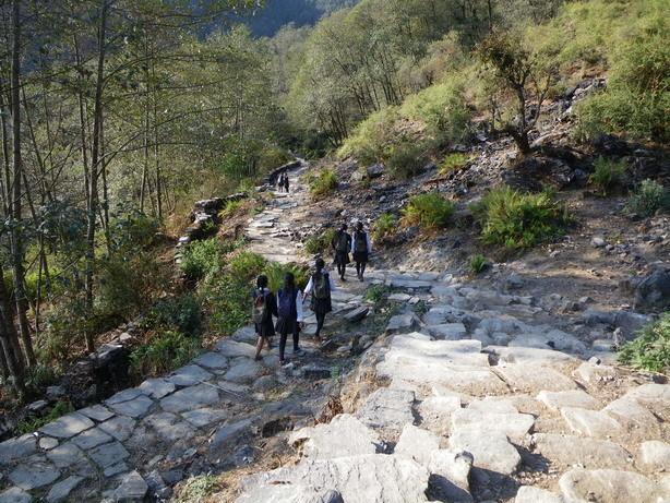 Komrong Dandaへの登り2_サイズ変更