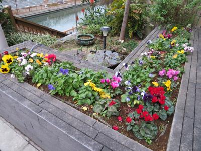 IMG_0362橋の袂の花壇_400