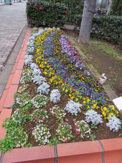 IMG_0369横長の花壇_400