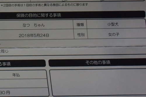 DSC_7052aa.jpg