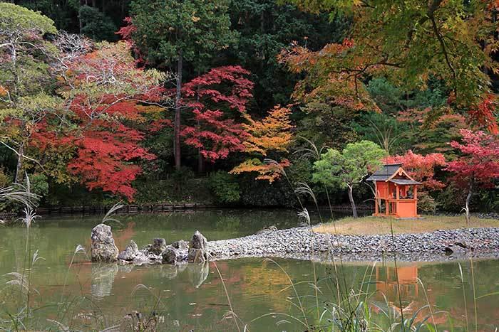 浄瑠璃寺 紅葉4