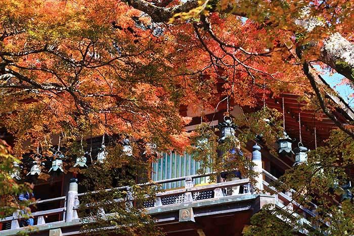 談山神社 紅葉6