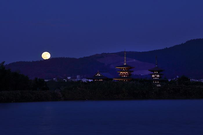 西ノ京 薬師寺双塔1