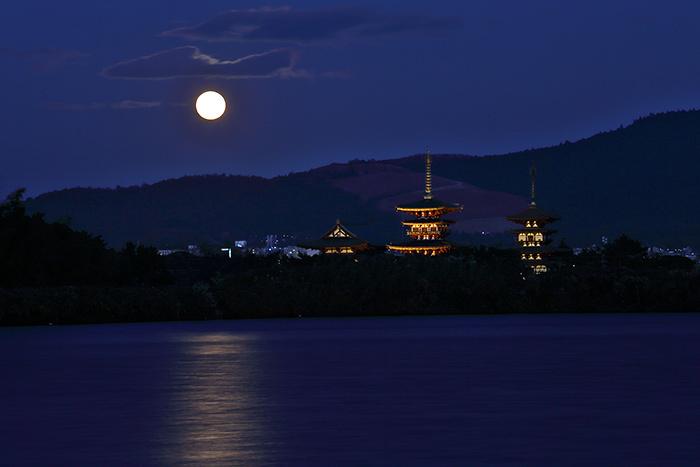西ノ京 薬師寺双塔2