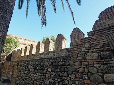 スペイン中東264マラガアルカサバ